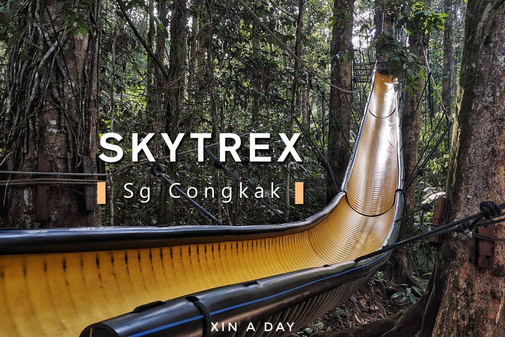 Skytrex Sungai Congkak
